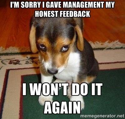 shamed_puppy